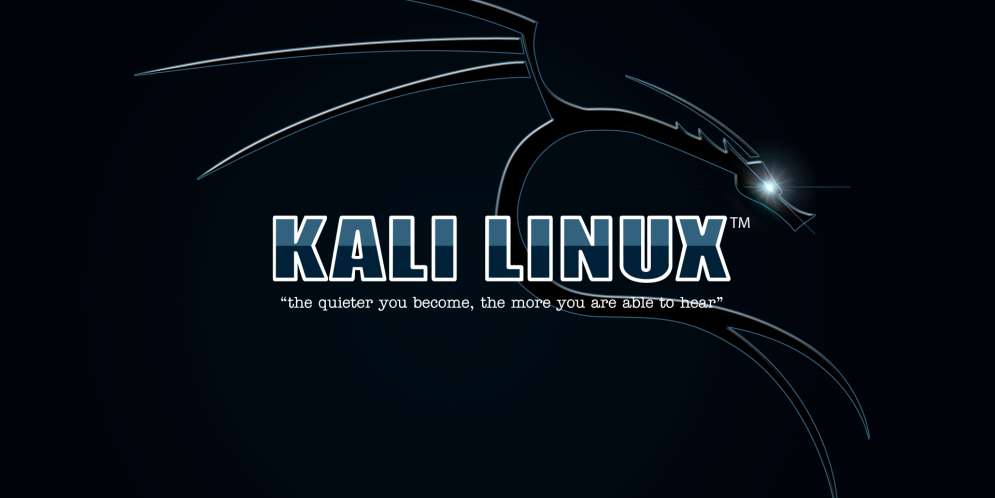"Machine virtuelle – Linux Kali 2017.3 light<span class=""rating-result after_title mr-filter rating-result-873"">	<span class=""mr-star-rating"">			    <i class=""fa fa-star mr-star-full""></i>	    	    <i class=""fa fa-star mr-star-full""></i>	    	    <i class=""fa fa-star mr-star-full""></i>	    	    <i class=""fa fa-star mr-star-full""></i>	    	    <i class=""fa fa-star mr-star-full""></i>	    </span><span class=""star-result"">	5/5</span>			<span class=""count"">				(1)			</span>			</span>"